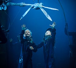 Aquarium-245.jpg